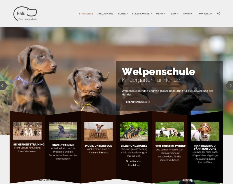 Die neue Homepage der Hundeschule Balu